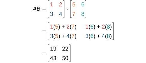 determinant calculator 9